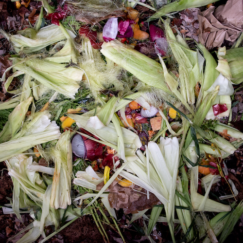 Corn Husks & Red Onions, 2018